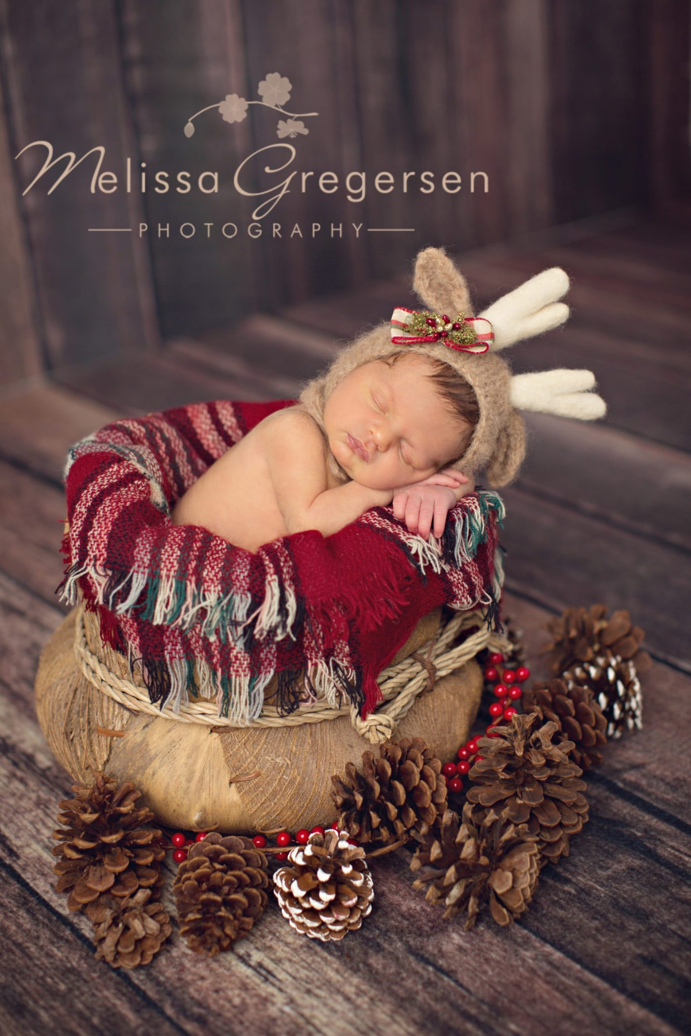 Christmas themed newborn photography session