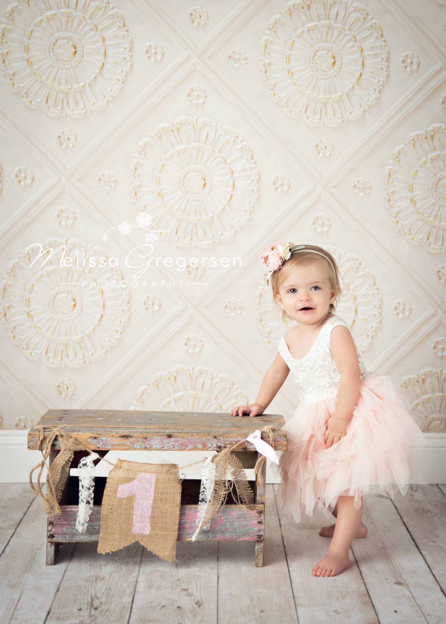 Ruby: Kalamazoo Michigan Baby Plan Photography - Gregersen Photography