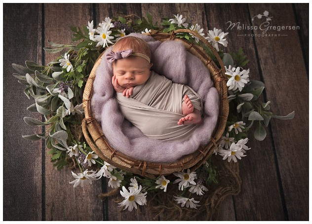 Newborn in neutral basket surrounded by daisies
