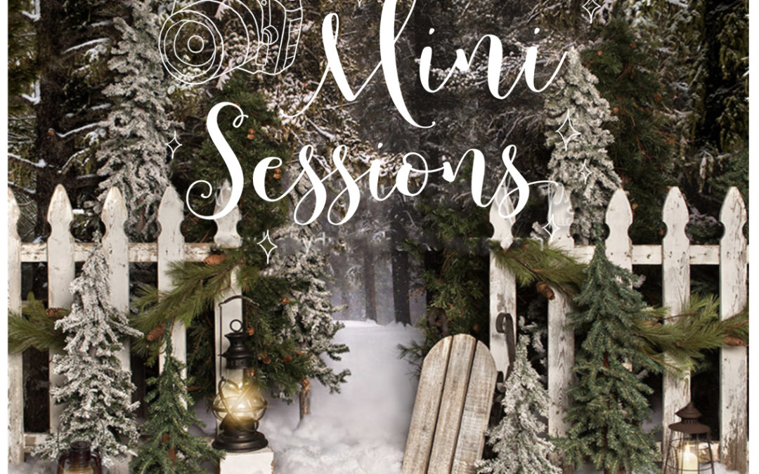 2018 Christmas Holiday Mini Photography Sessions in Kalamazoo Michigan