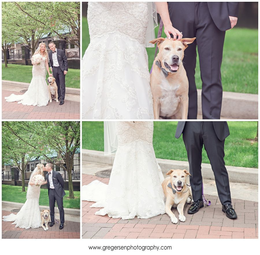 bride and groom with her dog