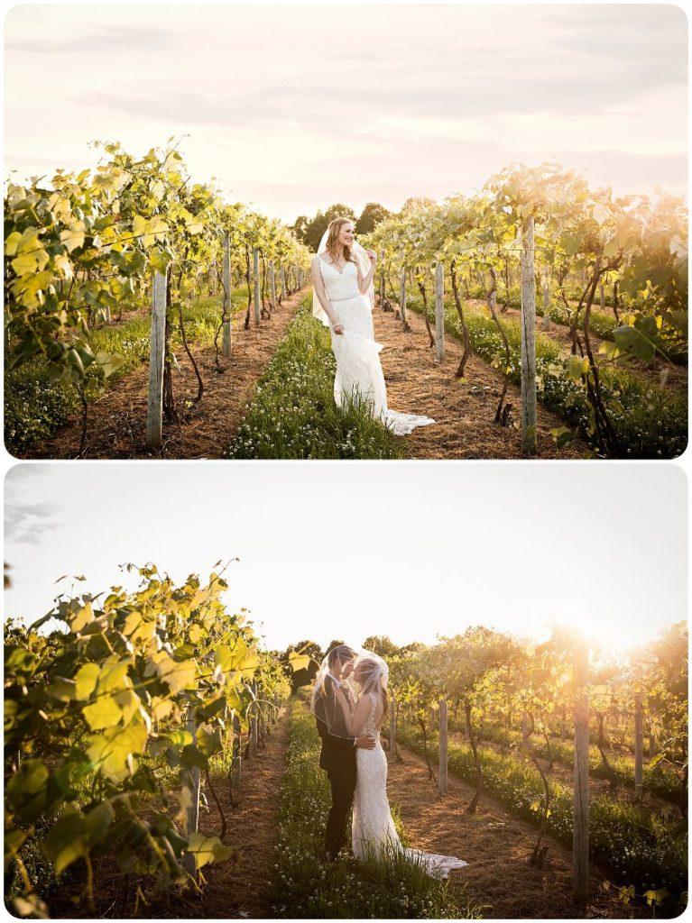 Beautiful bride in the vineyard at Hidden Vineyard Wedding Barn