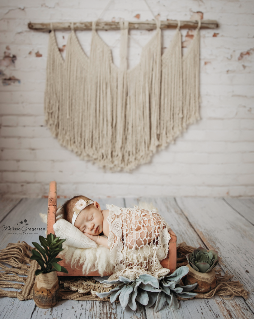 boho newborn photograph set up at Gregersen Photography Studio in Kalamazoo, MI