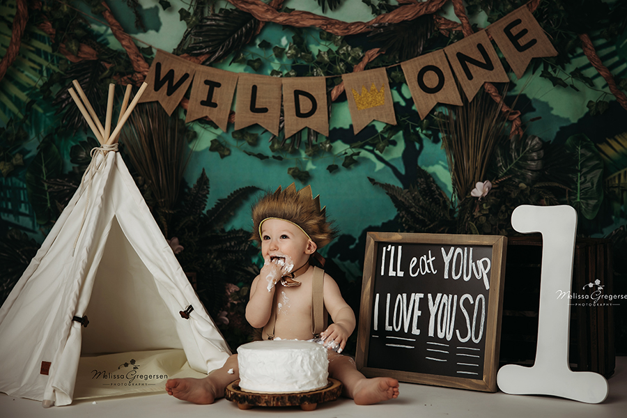 WILD ONE cake smash photography session